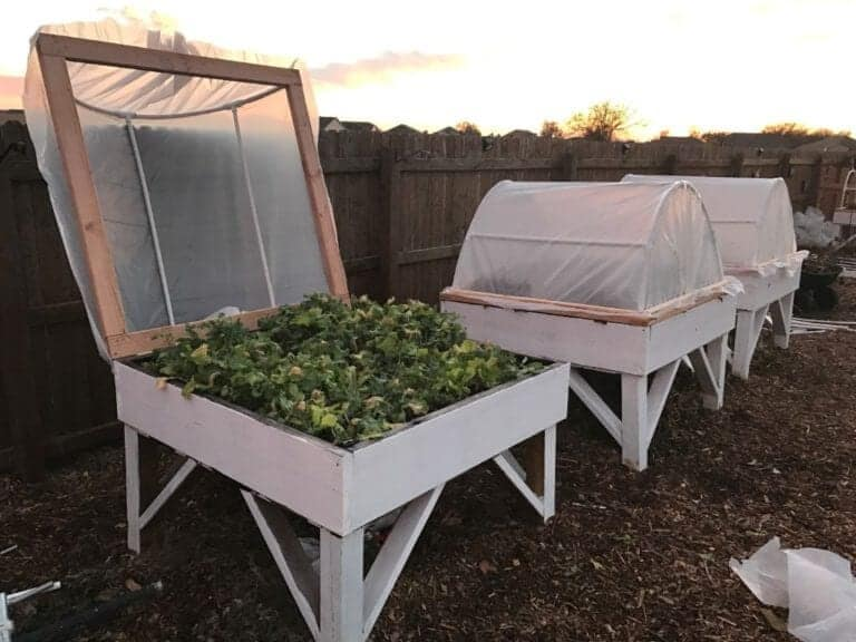 Hinged Hoop House