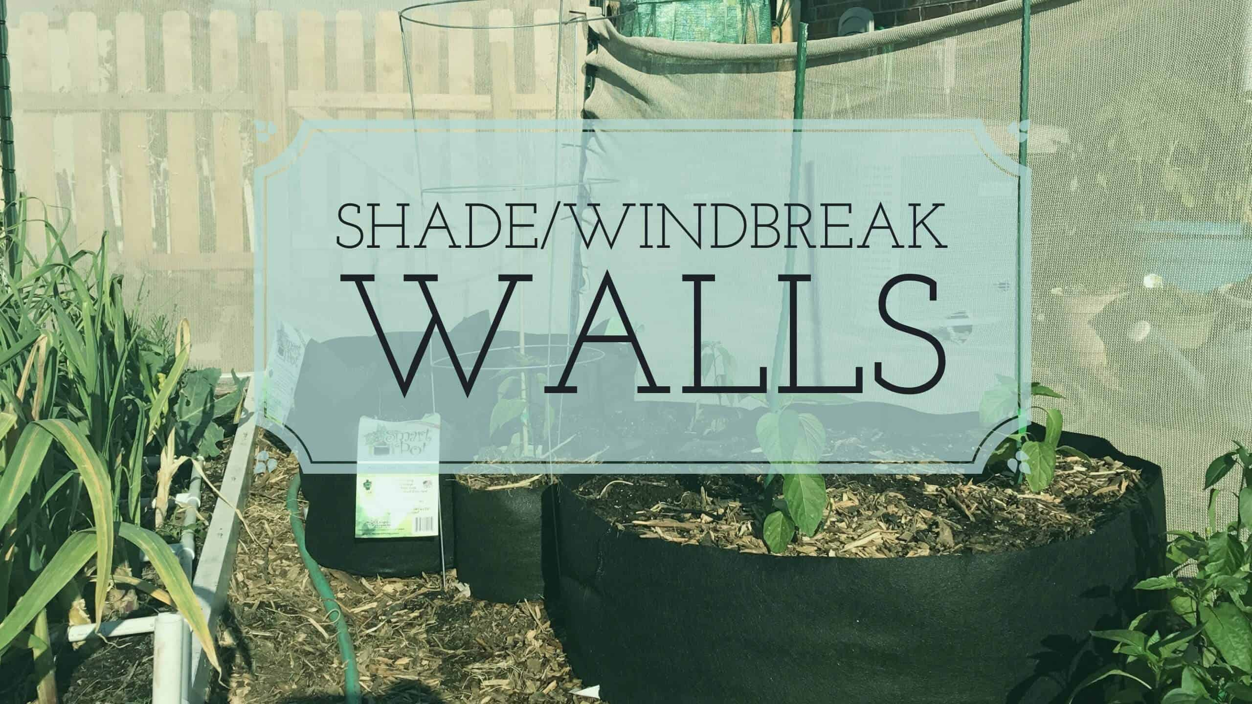 Building an EASY DIY Afternoon Shade / Windbreak Wall - From Seed to ...