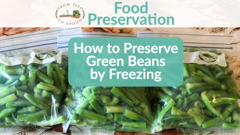 Green bean preservation
