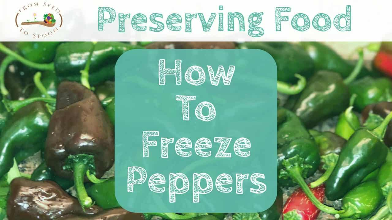 How to Freeze & Preserve Peppers/Jalapenos From Your ...