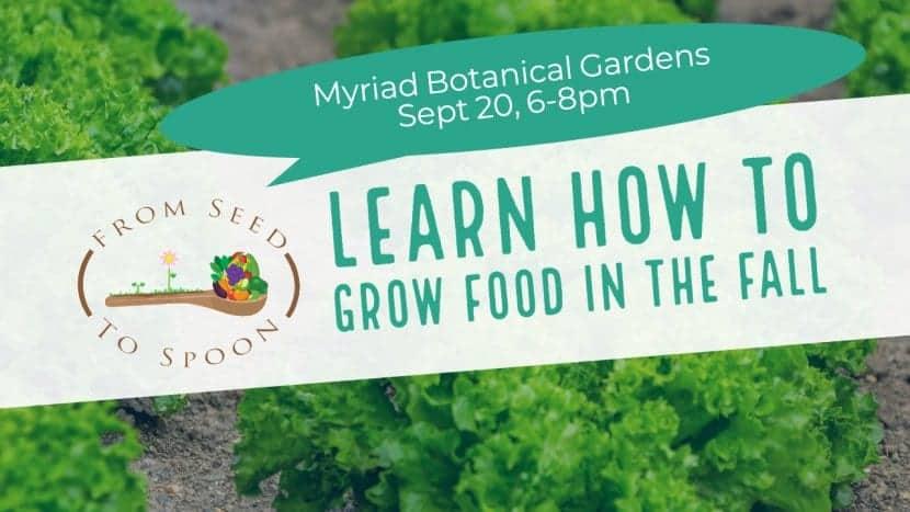 Myriad Gardens class(1)
