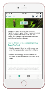 Download the From Seed to Spoon mobile app to learn how to attract fireflies in your garden