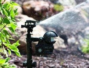 motionactivatedsprinkler