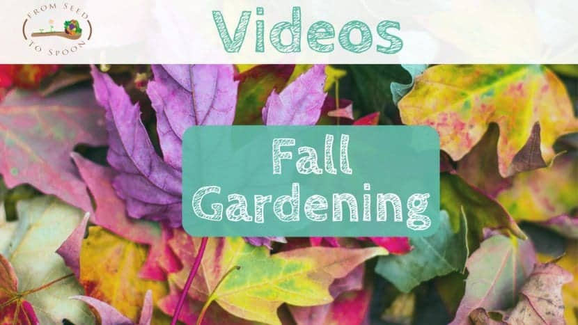 Fall Gardening video