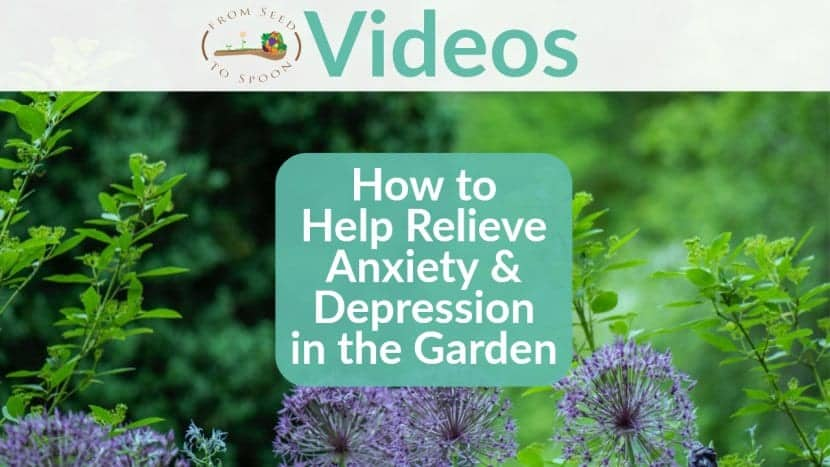How to Relieve Anxiety & Depression blog post