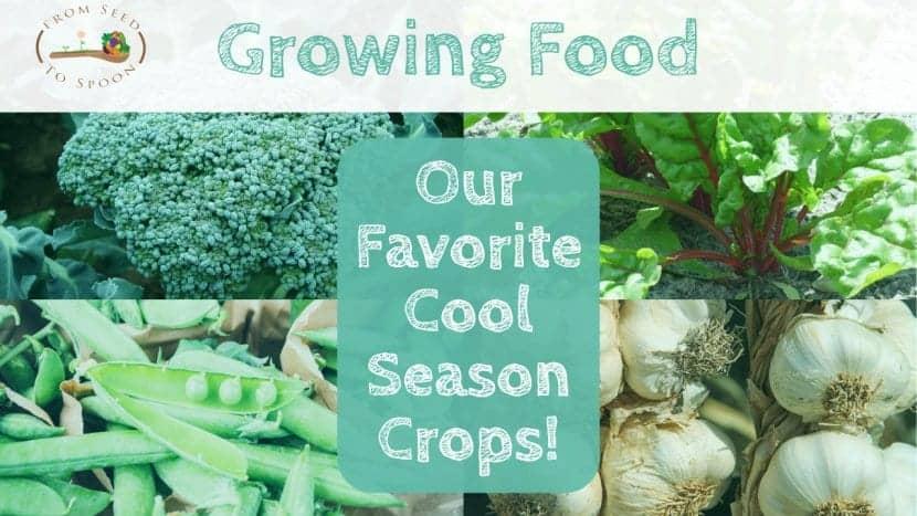 Our Favorite Cool Season Crops