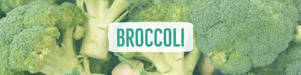 broccoli-header