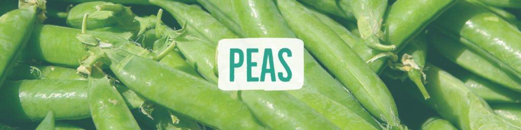 peas-header