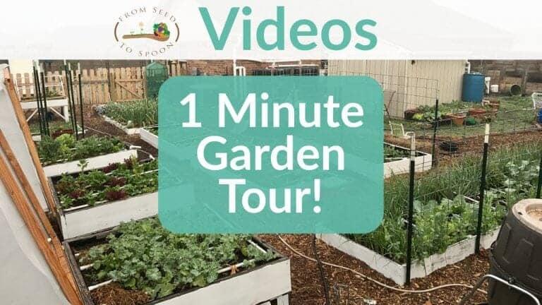 1 Minute Tour Video