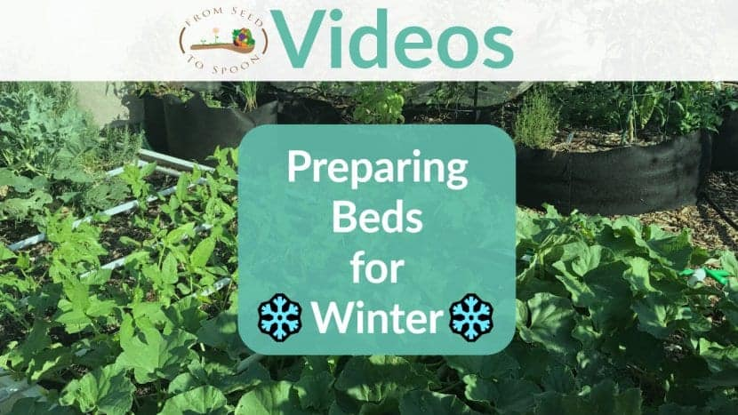 Preparing Beds for Winter blog post