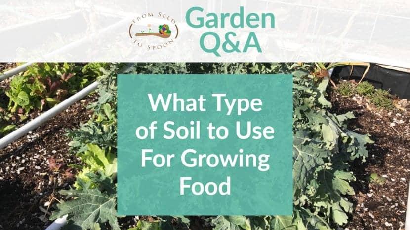 Q&A_ Soil