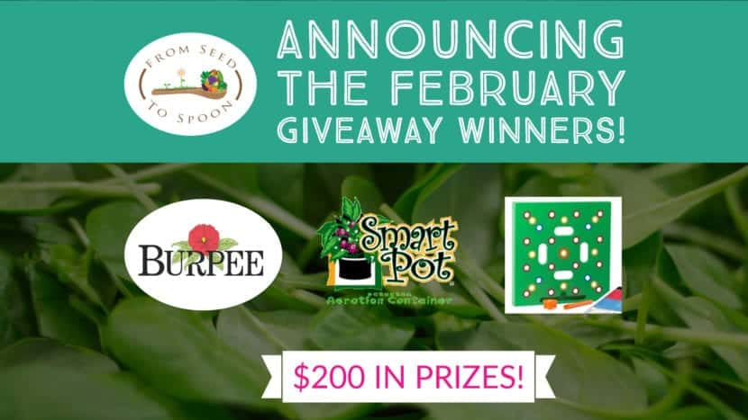 february winner announcement