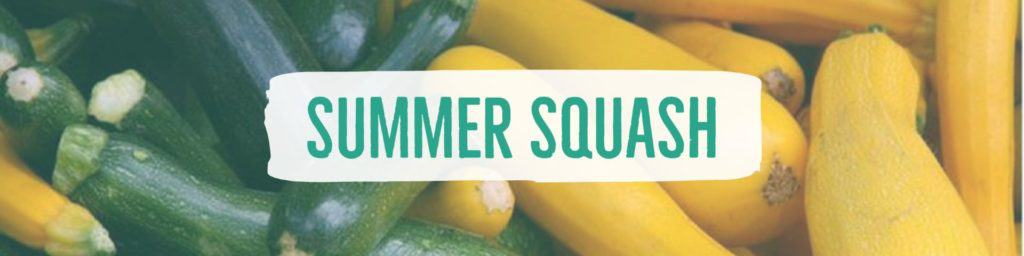 summersquash-header