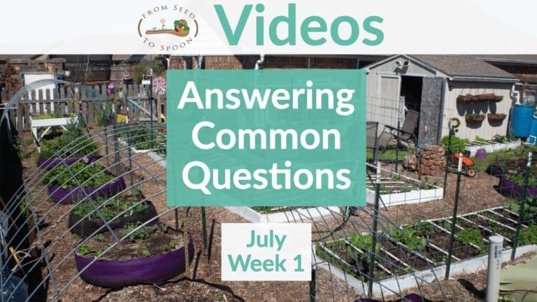 July 1 Q&A