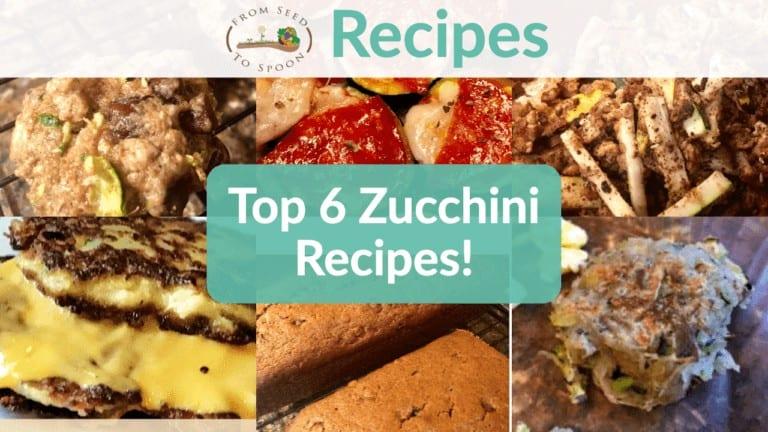 Top 6 Zucchini Recipes