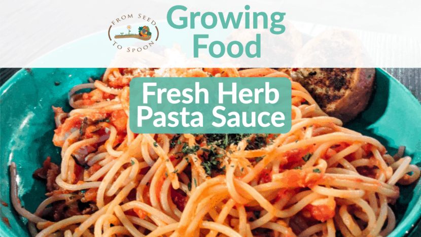 Fresh Herb Spaghetti Saucer (1)