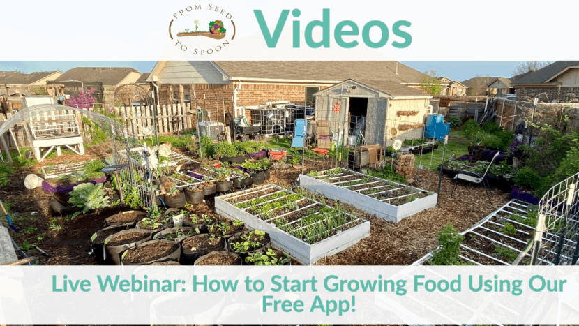 Live Stream How To Start Growing Food Using Our Free App From